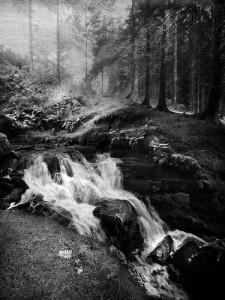 The Falls 6