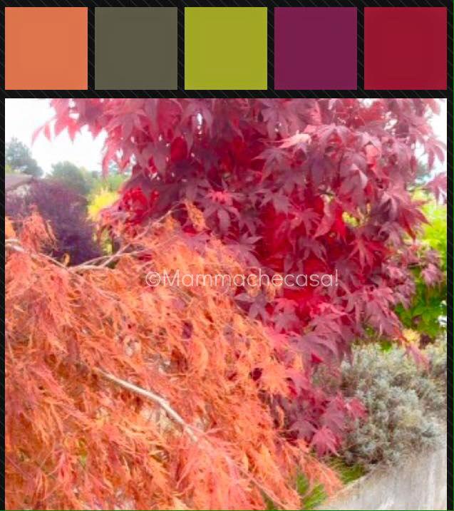Autumn color palette - ©Mammachecasa!
