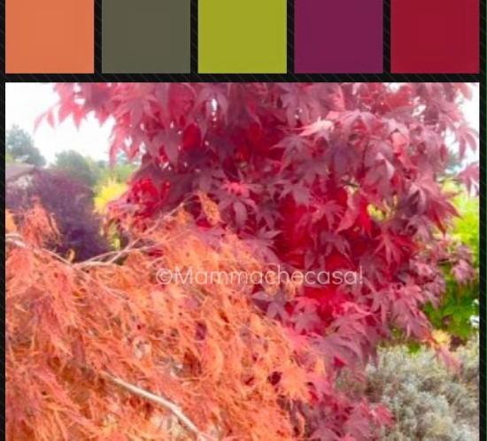 Autumn-palette-2015-Mammachecasa