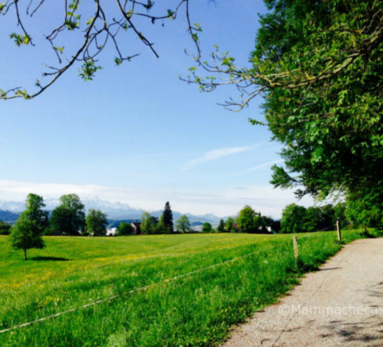 campagna svizzera