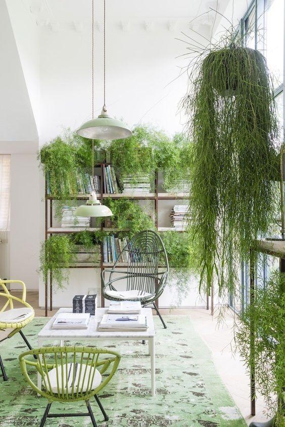 Le case diventano serre verdi per portare la natura in casa
